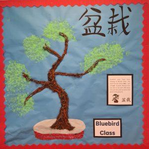 Bluebird Class